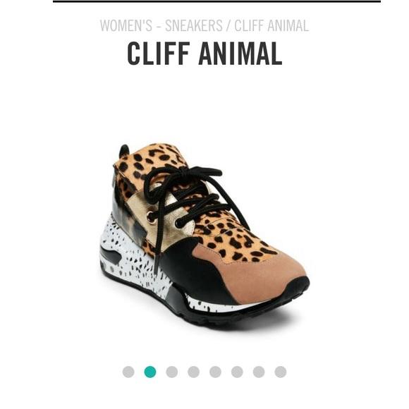 2045d8c8afc Steve Madden Cliff Animal Print Sneakers